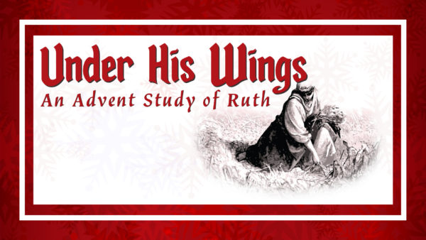 Under His Wings: An Advent Study of Ruth