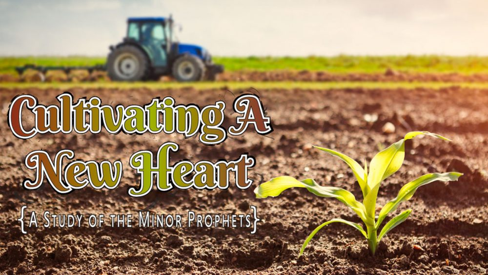 Cultivating a New Heart: A Study of the Minor Prophets