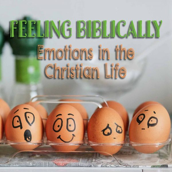 FEELING BIBLICALLY: Emotions in the Christian Life